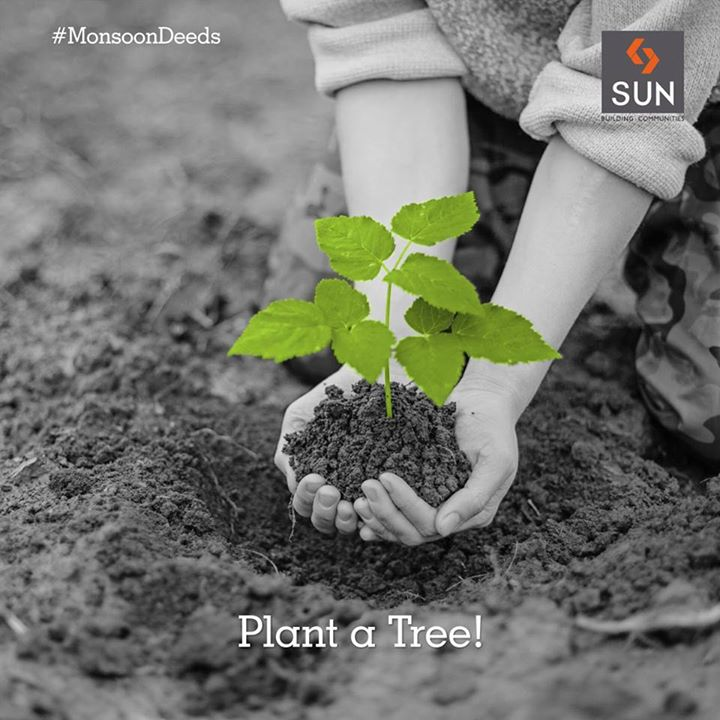 #MonsoonDeeds #Happyweekend This monsoon, let's take an initiative to plant trees and nurture it for a bright future.  #PlantTree #Brightfuture #Monsoon #weekendquote